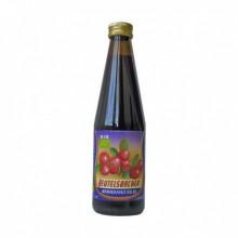 Zumo Arándano Rojo 330ml Beutelsbacher